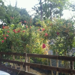photo of garden spot of mandeville mandeville la united states - Garden Spot
