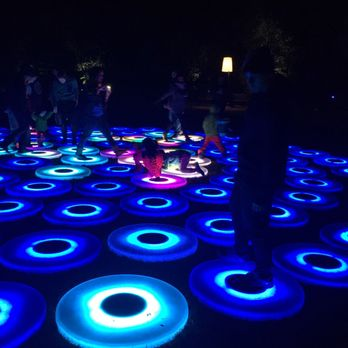 Enchanted Forest Of Light At Descanso Gardens Temp Closed 198 Photos 41 Reviews Local