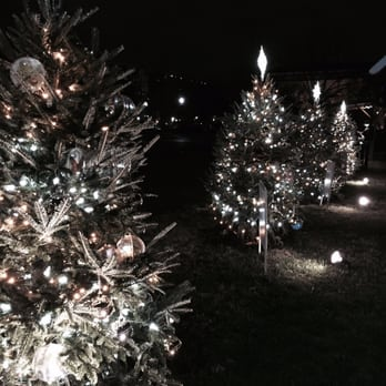 national christmas tree 187 photos 56 reviews local flavor 1201 eye st washington dc yelp - Washington Dc Christmas Tree