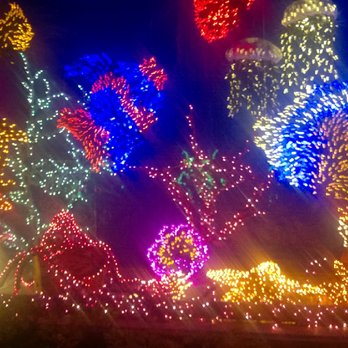 photo of garden dlights bellevue wa united states fish window - Bellevue Christmas Lights
