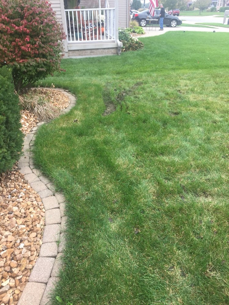 Naturescape Tree Services 1300 E 86th Pl Merrillville In Phone Number Last Updated December 10 2018 Yelp