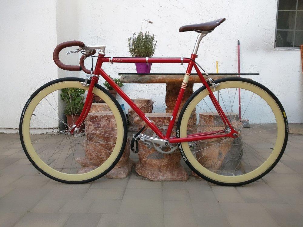 Molte biciclette