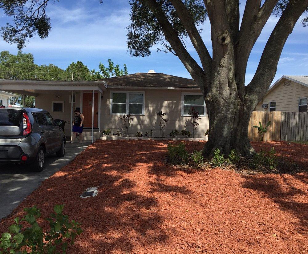 Bam's Tree Service: Seminole, FL