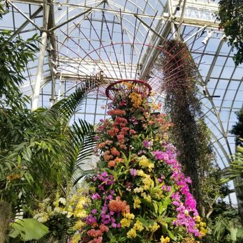 New York Botanical Garden - 4396 Photos & 662 Reviews
