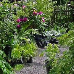 Cypress Garden Nursery 32 Photos 13 Reviews Nurseries