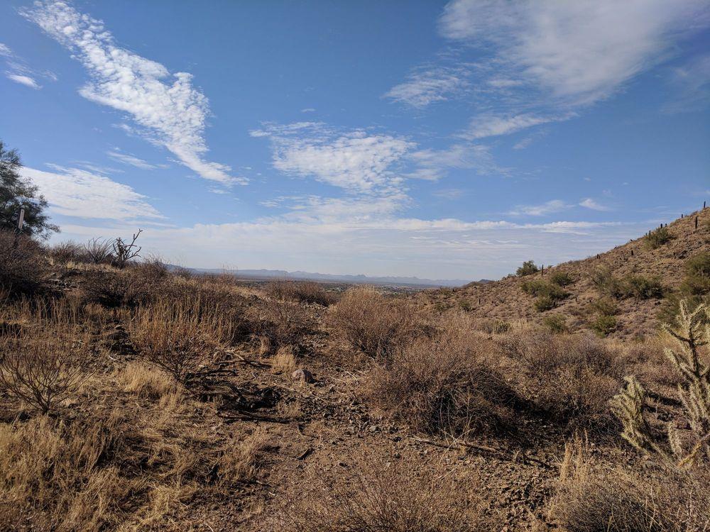 Sonoran Preserve