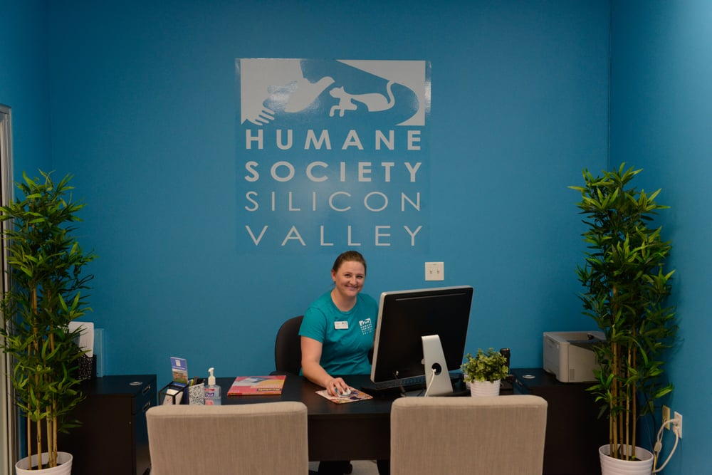 Humane Society Silicon Valley - San Jose: Petco, San Jose, CA