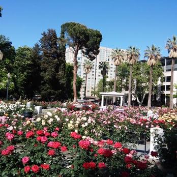 Beau Photo Of International World Peace Rose Gardens   Sacramento, CA, United  States. Smells