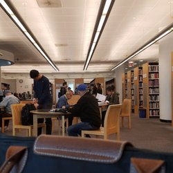 Girl sudying in library has sex