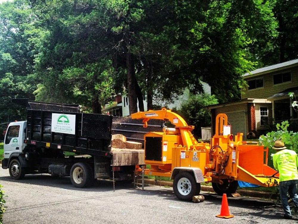 Photo Of Green Vista Tree Care Springfield Va United States