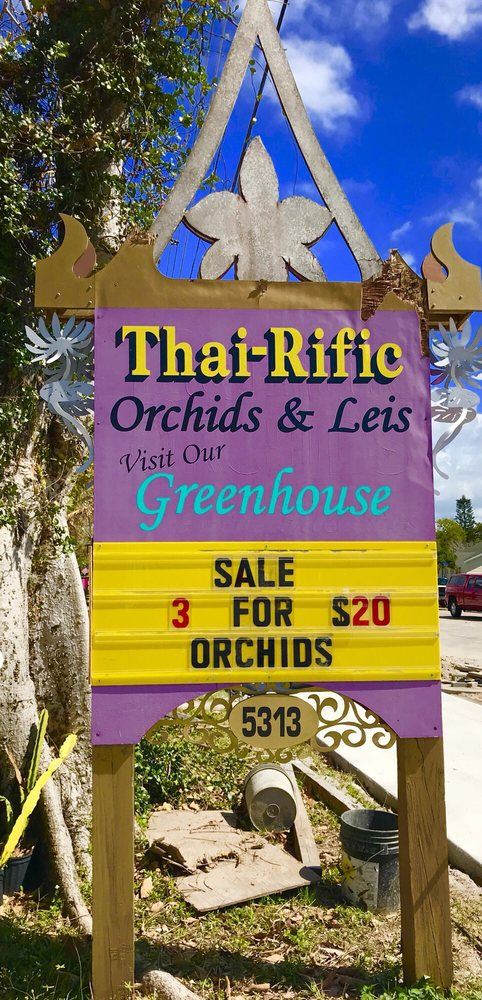 Thai Orchids and Leis: 5313 Gulfport Blvd S, Gulfport, FL