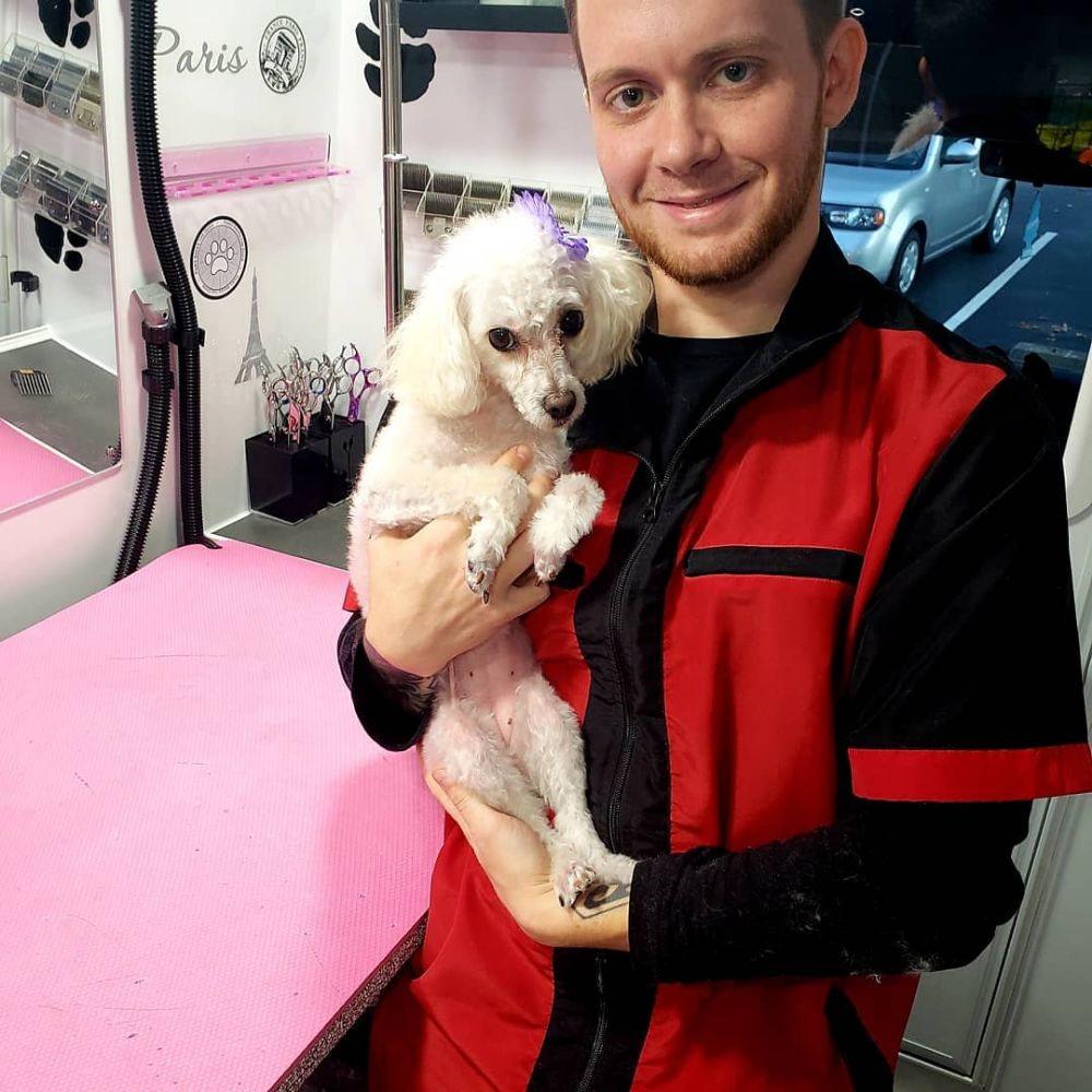 Ooh La La Mobile Pet Spa: Southern Rhode Island, RI