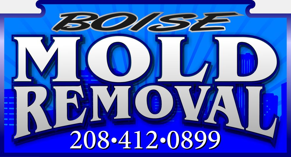 Boise Mold Removal: 859 S Jake Ave, Kuna, ID