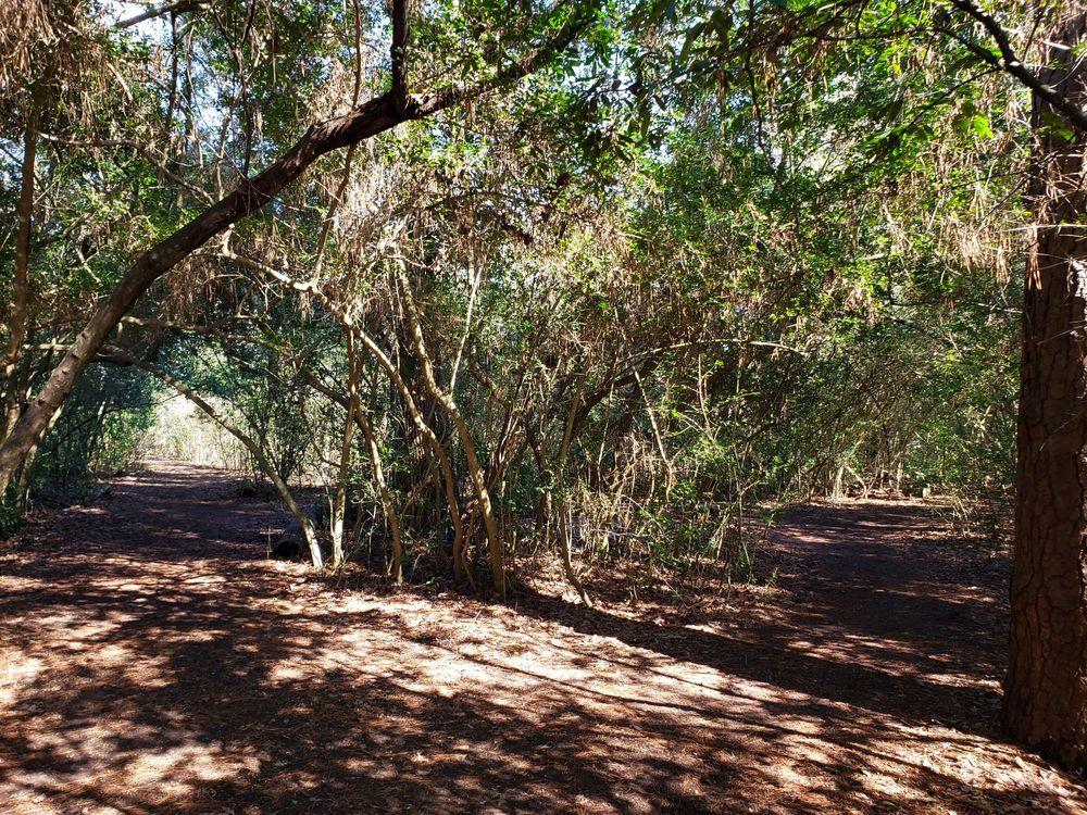 Edith L Moore Nature Sanctuary: 440 Wilchester Blvd, Houston, TX