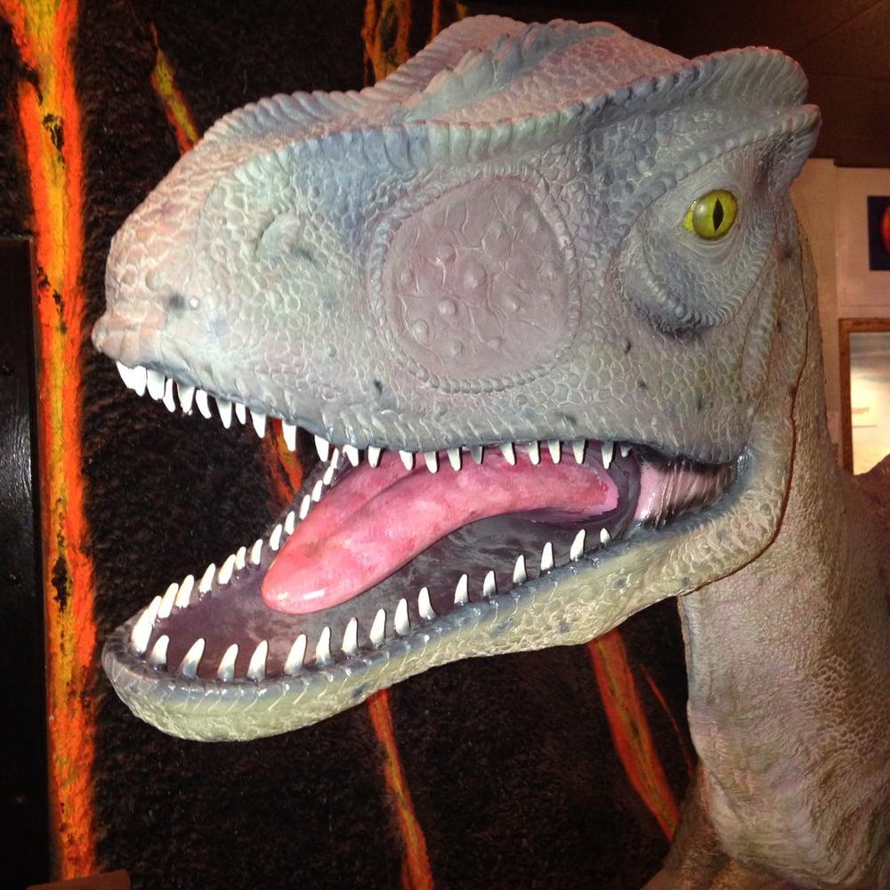 A Velociraptor Model Yelp