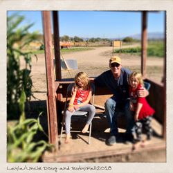 Santa Rosa Pumpkin Patch - 46 Photos & 37 Reviews - Pumpkin Patches