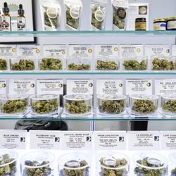 Takoma Wellness Center - 20 Photos & 13 Reviews - Cannabis