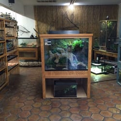 The Reptile Zone - 21 Photos - Pet Stores - 542 NE Greenwood Ave ...