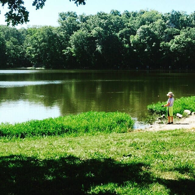 Wallace State Park: RR 4, Cameron, MO