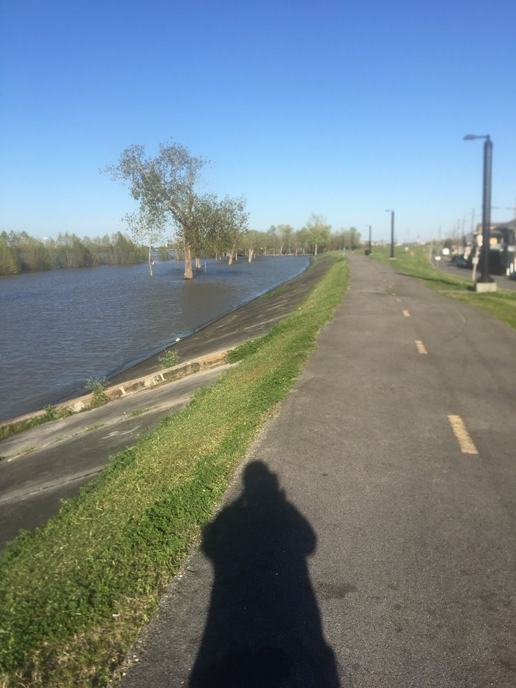 The New Orleans Levee