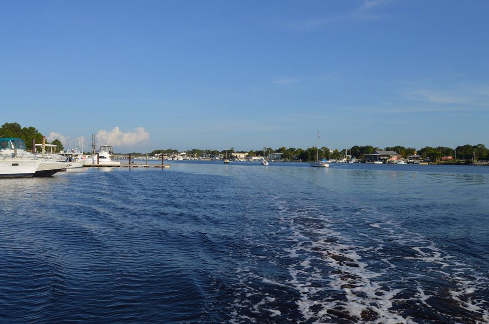 Forgotten Coast Watersports: 275 Timber Island Rd, Carrabelle, FL