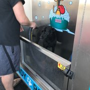 Sandy paws dog wash 19 photos 14 reviews pet groomers 18971 photo of sandy paws dog wash huntington beach ca united states solutioingenieria Image collections