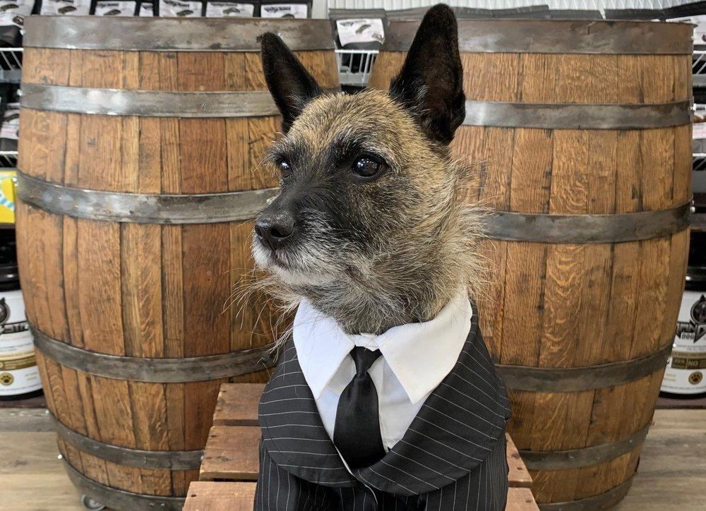 Gangsta Dog: 2400 Lime Kiln Ln, Louisville, KY