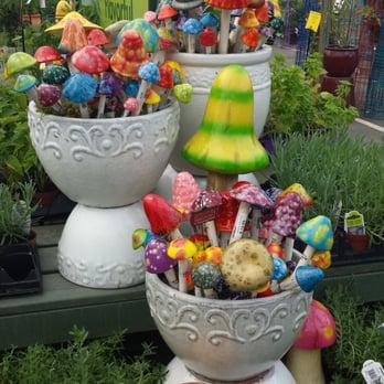 Pike Nurseries 17 Photos 36 Reviews Gardening