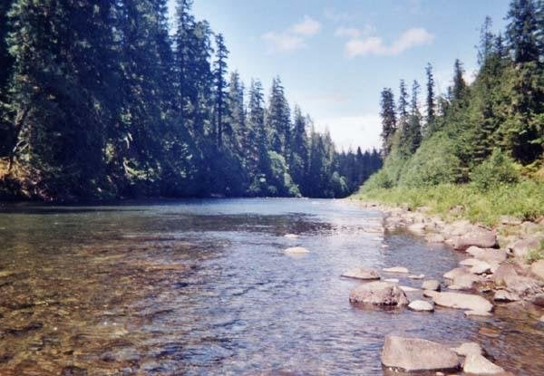 Clackamas River: Estacada, OR