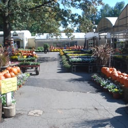 Photo Of Meadows Farms Nurseries Route 7 Herndon Va United States