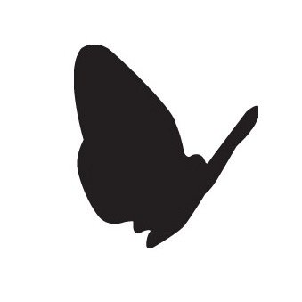 Black Butterfly Productions