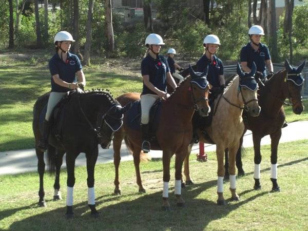 Photo of Forest Lake Riding School - Forest Lake Queensland, Australia. The  horses