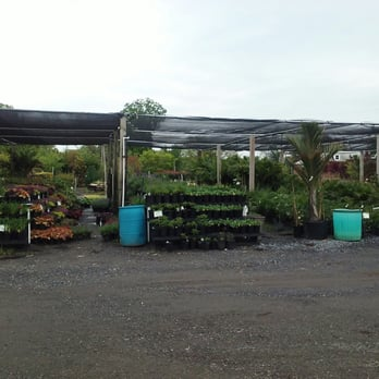 Photo Of Shemin Nurseries Burtonsville Md United States Plants Galore