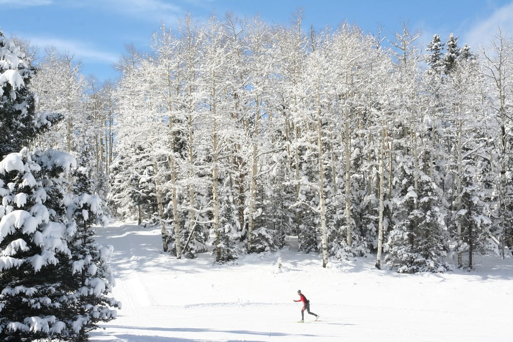 Enchanted Forest Cross Country Ski Area: 29 Sangre De Cristo Dr, Red River, NM