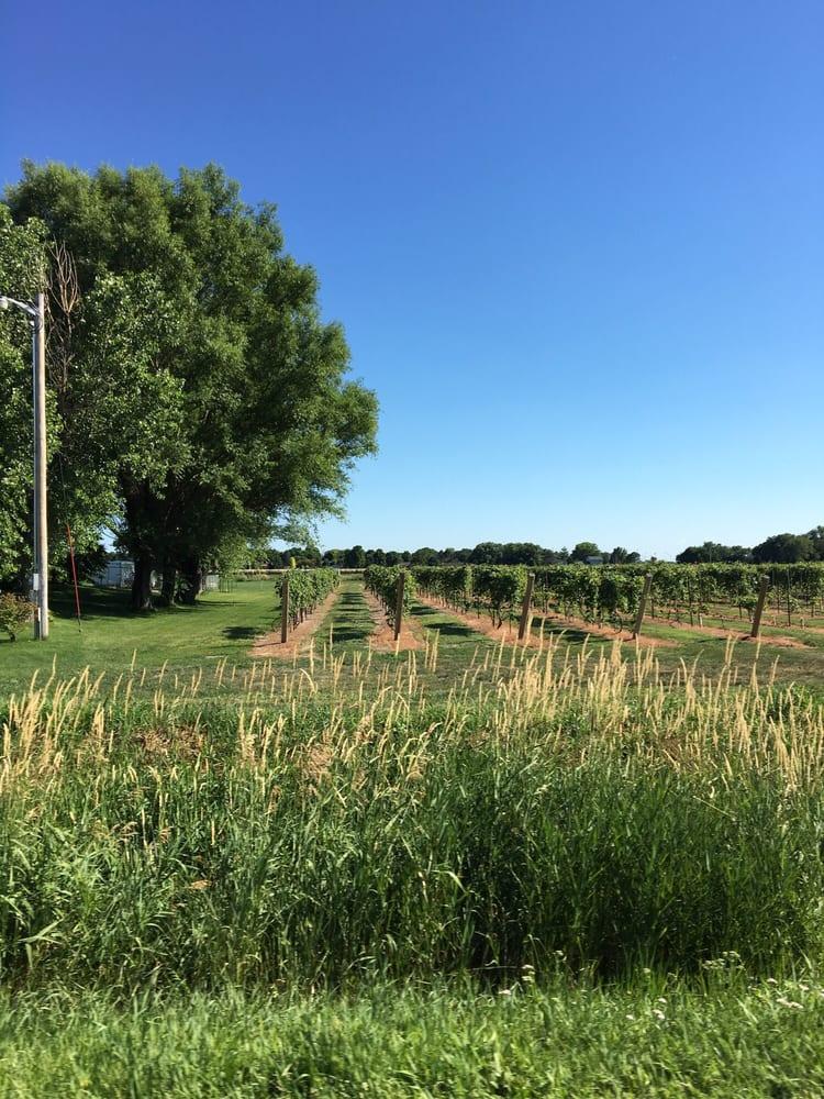 Mac's Creek Winery: 43315 Rd 757, Lexington, NE