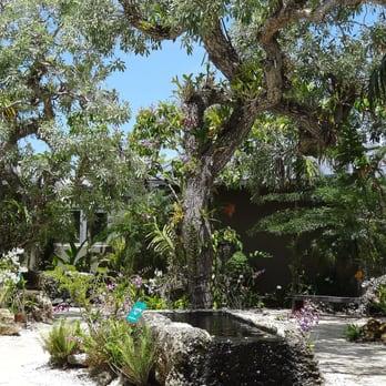 Naples Botanical Garden 423 Photos 91 Reviews