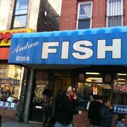 andrew fish market fischmarkt bedford stuyvesant