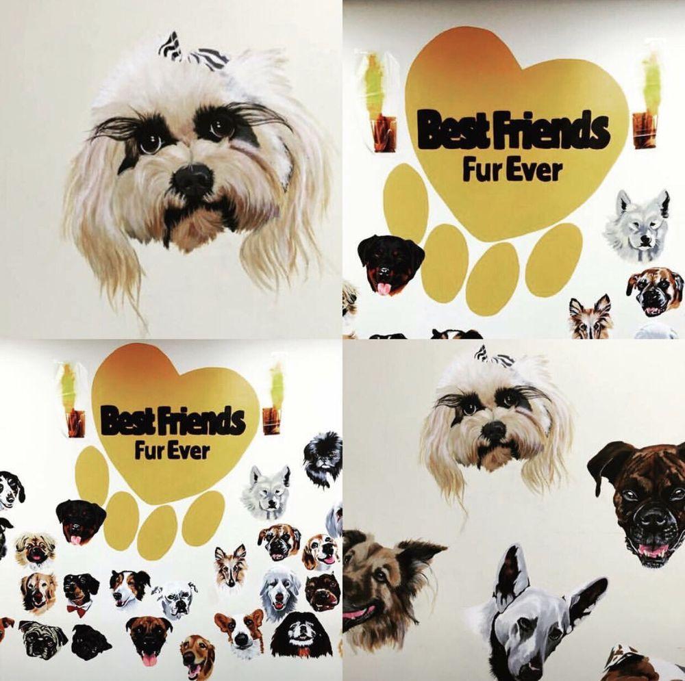 Best Friends Fur Ever: 246 Cockeysville Rd, Cockeysville, MD