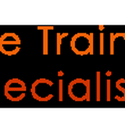 32 The Training Specialists Driving Schools Traffic