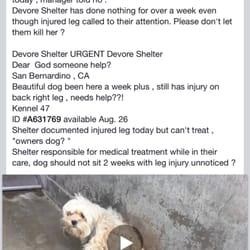 pets shelter