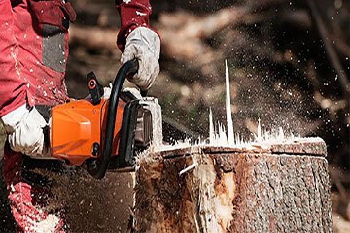 Romer Bros Tree & Shrub Service: 4243 N Bearsdale Rd, Decatur, IL