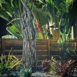 Lovely Photo Of Xeristyle Exterior Design   Fullerton, CA, United States.  Fullerton 2014