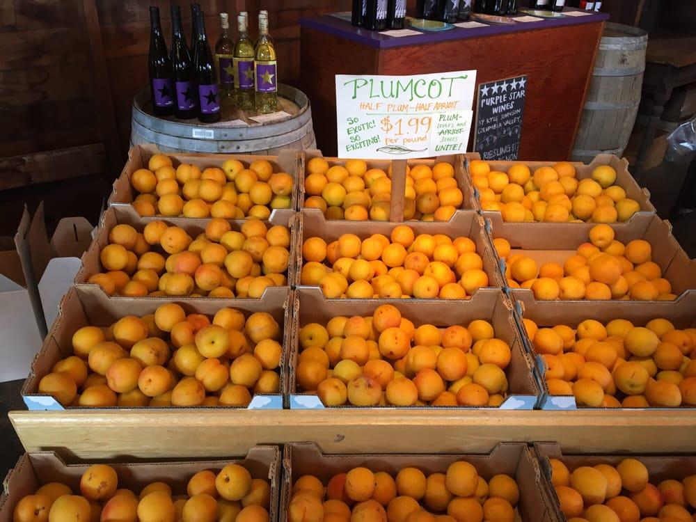 Johnson Orchards: 4906 Summitview Ave, Yakima, WA