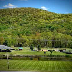tri county lawn landscape tree services dover plains ny