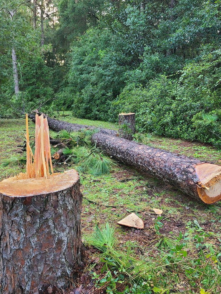 Gene Rivers Tree Service: 3811 Owens St, Mobile, AL
