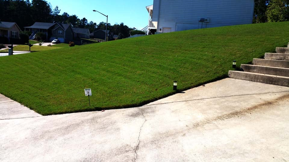 Another Weed Free Lawn By Sharplawns Turf Care Llc Yelp