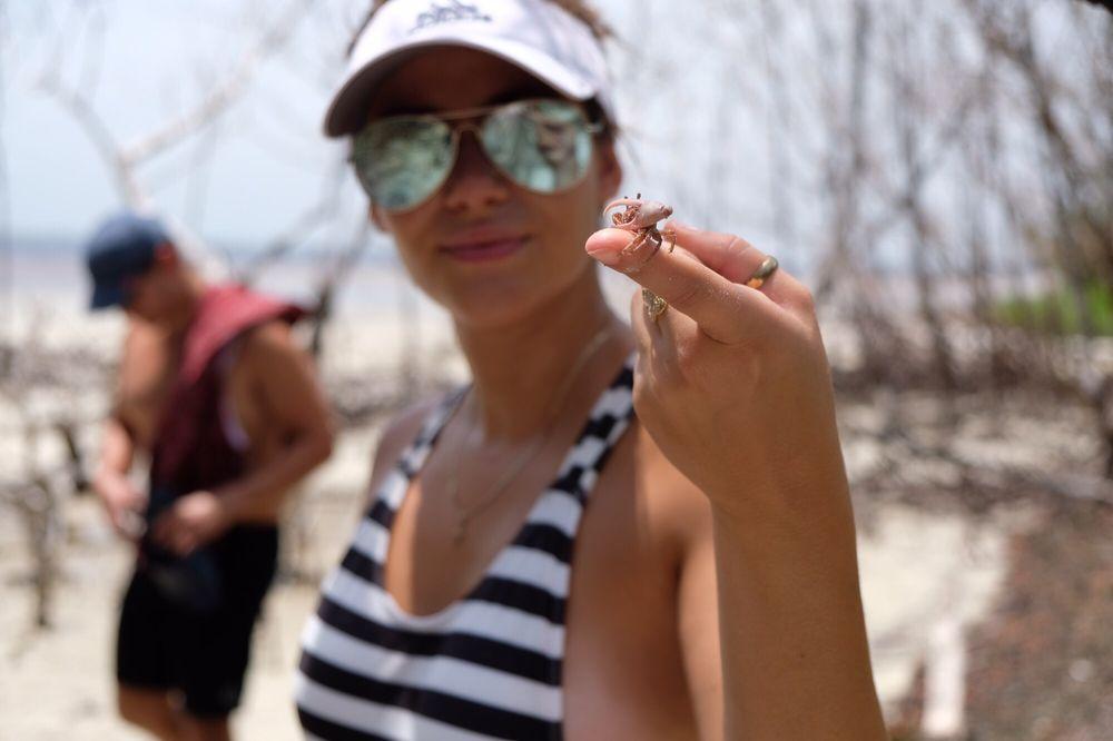 Bunche Beach Preserve 80 Photos 17 Reviews Beaches 18201