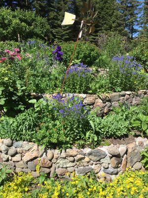 Spring Hill Nursery Gardens 1234 Nixon Rd Mount Shasta Ca Nurseries Mapquest