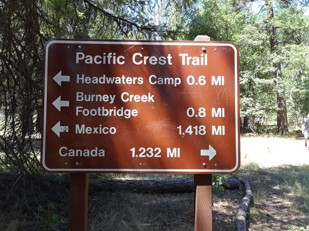 Pacific Crest Trail, Squaw Valley Trailhead: McCloud, CA