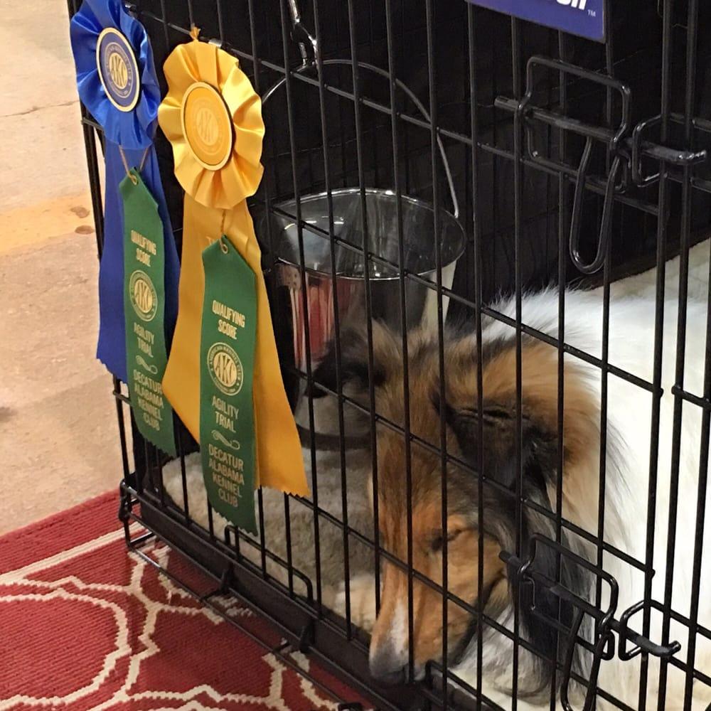 Decatur Alabama Kennel Club